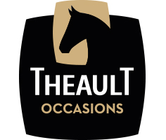 Logo Theault